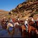 Qi Pony Treks from Malealea Lodge, Lesotho