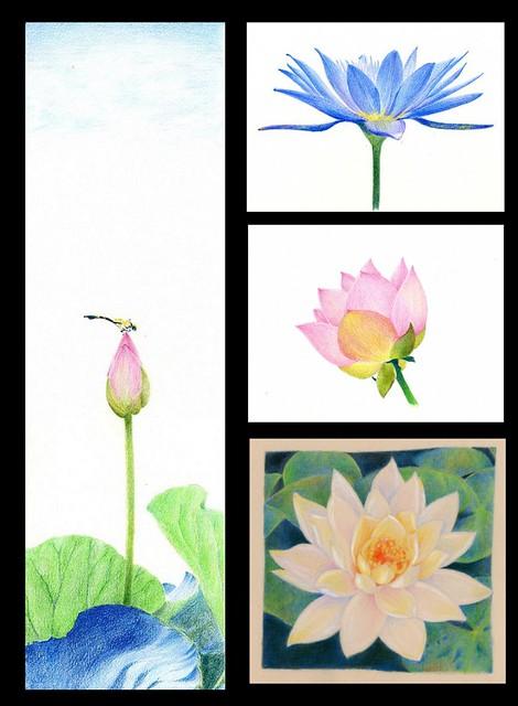 2012_06_04_lotus