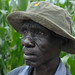 """It's amazing,"" says farmer of conservation agriculture in Malawi"