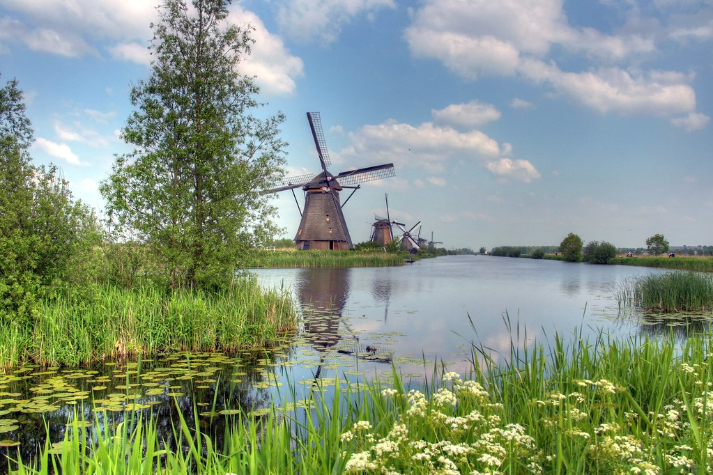 Pastoral Windmills