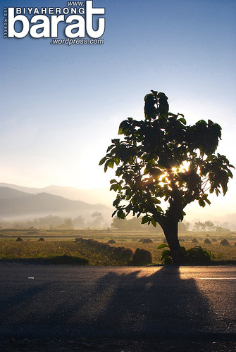 road morning mountains tree sunrise view side philippines fields tarlac