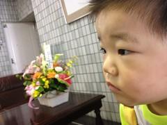 とらちゃんとロビーのお花 (2012/6/26)