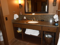 Master bathroom Kidani Village Animal Kingdom Lodge 1-bedroom 2-bedroom villa
