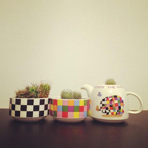 DIY teaset cactus