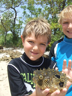 Koen with a striped burrfish | by AdventureMIke.com