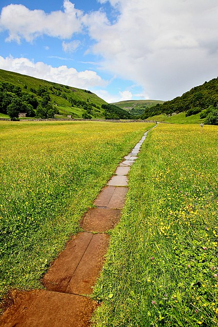 Wildflower meadows in Swaledale, Yorkshire Dales countryside.