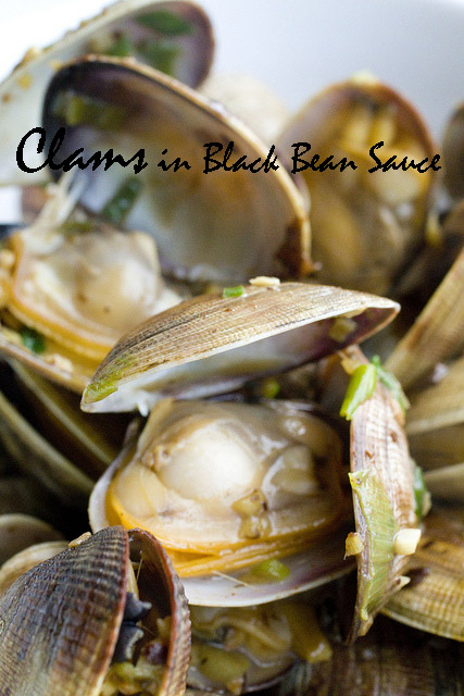 Clams in Black Bean Sauce 2