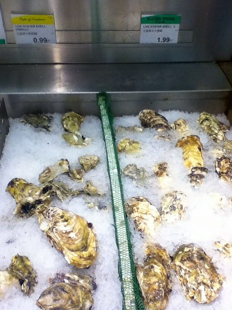 Live Oyster Shell $0.99 or $1.99