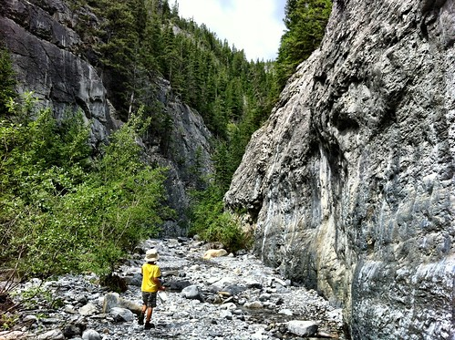 Kid Friendly Hikes Near Calgary: Grotto Canyon