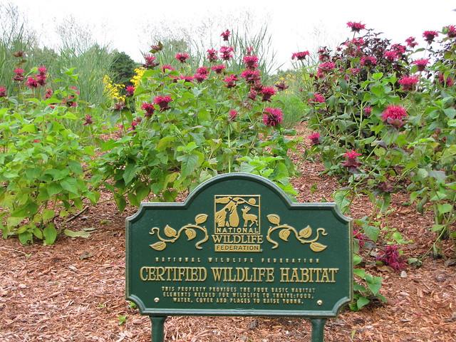 Certified Wildlife Habitat | Flickr - Photo Sharing!