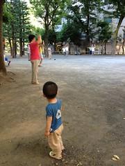朝散歩 ラジオ体操見学とらちゃん (2012/8/2)