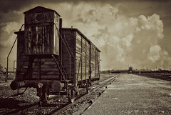 Carriage of Hell, Auschwitz.