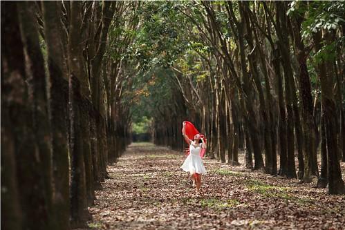 [フリー画像素材] 人物, 女性 - アジア, 人物 - 森林, ワンピース・ドレス ID:201211112200