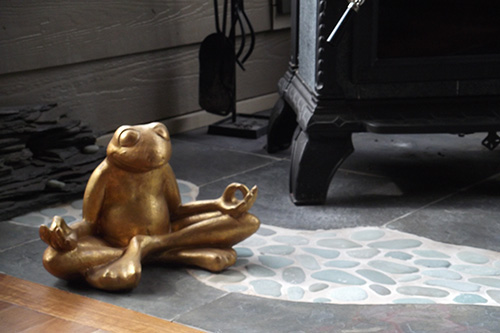 1582 meditation frog