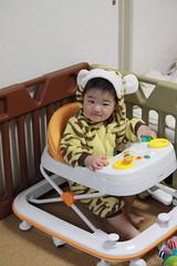 虎の着ぐるみで歩行器(2012/4/23)