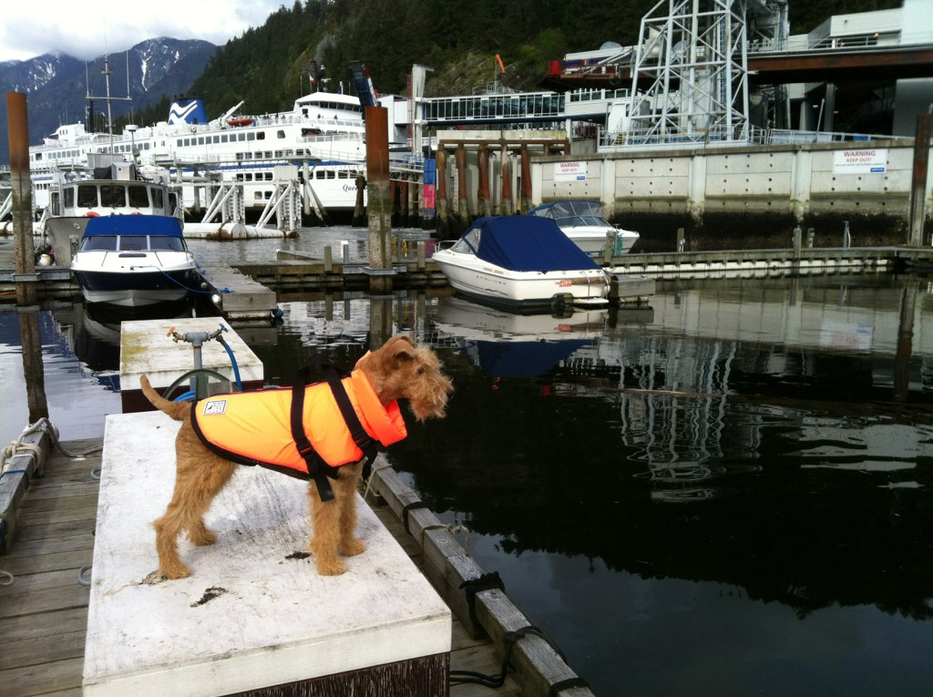 Posing in my new life vest.