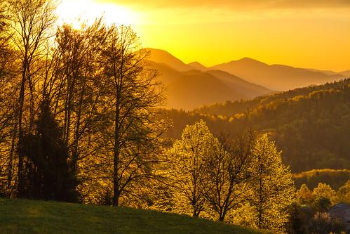 morning light sunrise view hills slovenia gora limbarska
