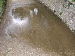 puddle, soil, water, road surface, infrastructure,
