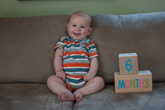 6 months-1