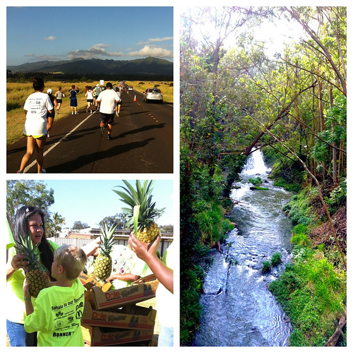 2012 Wahiawa Pineapple Run