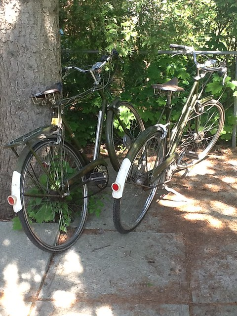 picture of two bronze-green Raleigh Superbe bikes