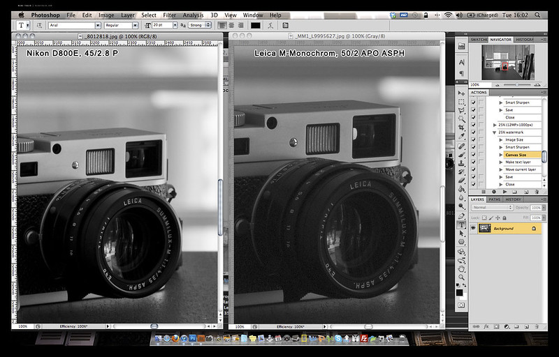 MM vs D800E 3 copy