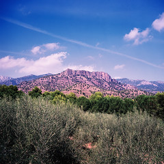 Photograph: [Untitled]; Sierra Espuña mountains, Murcia, Spain, September 2011. By Simon Holliday.