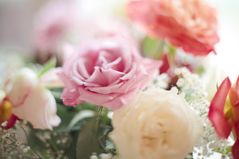 roses3s
