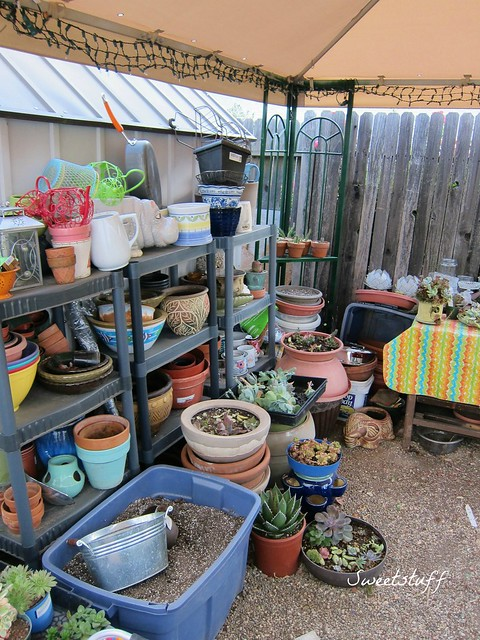 Pots and other gardening stuff