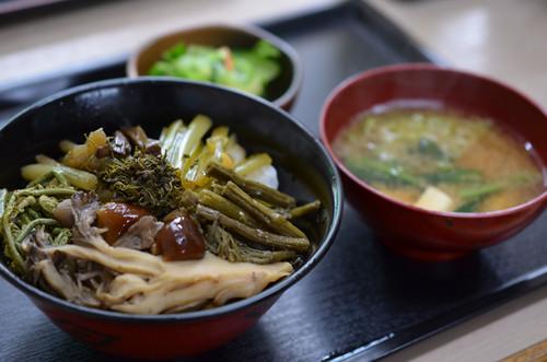 湯西川温泉なかや食堂「山の幸スペシャル定食」山菜なんと10種以上