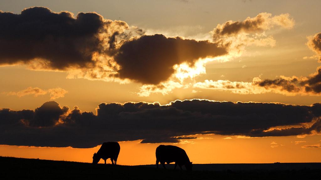 Sunset, Newbarn Hill