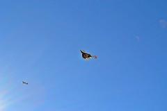 VSS Enterprise soars into sight during her recent glide flight. Photo by Chris Van Pelt