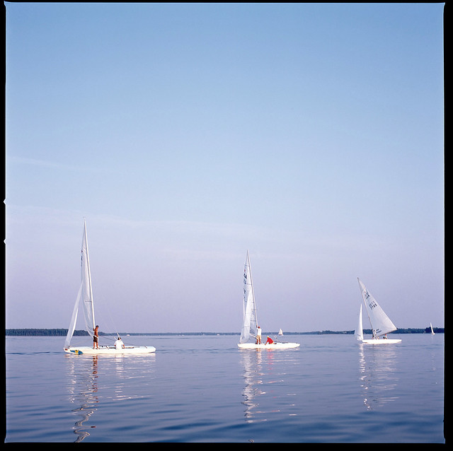 Sailboat Races, St. Michaels Maryland