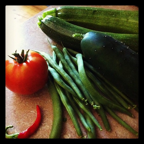 This morning's harvest. Two zucchinis, handful of greenbeans, and the first tomato, cucumber, and tiny cayenne pepper of the season!!!!
