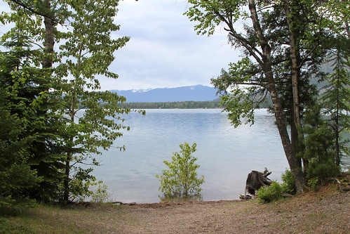 Fish Creek Picnic Area, Lake McDonald - 1 [There is more of a beach as the water levels drop through the summer.]