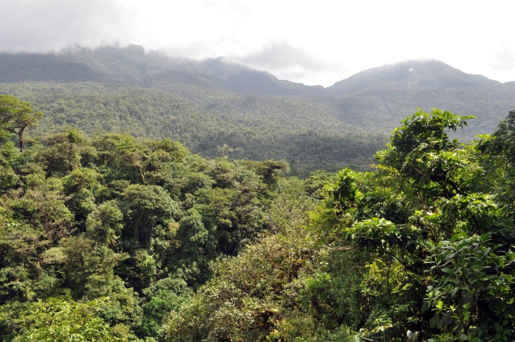 Vistas desde el Mirador río celeste, colorido capricho de la naturaleza - 7538385816 b37608c177 o - Río Celeste, Colorido capricho de la Naturaleza