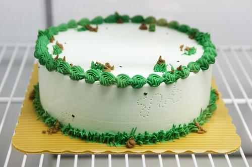 Poop ice cream cake