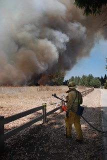 Wildfire Scorches More than 30 acres in Sepulveda Basin Recreation Area. © Photo by Mike Meadows. Click to view more...
