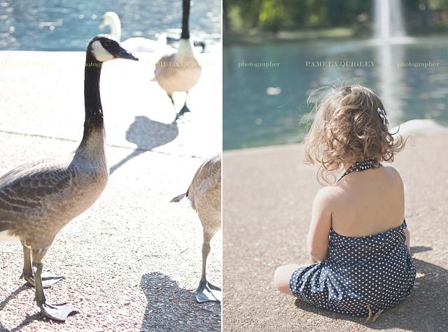 family photographer 6