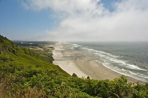 A view to the Oregon Dunes