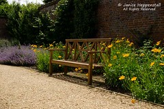 Osborne House Walled Garden bench scene