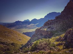 When we got to the top of this climb we thought the worst was over. Little did we know.... #trailrunning #nature #mountains #stellenbosch