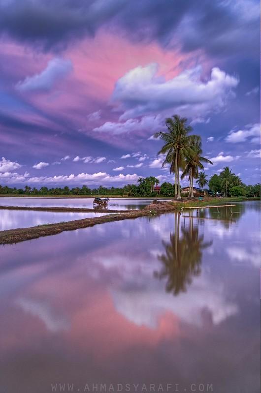 Kampong View