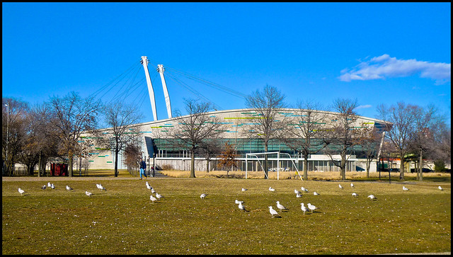 Aquatic Center Aquatic Center Queens Ny