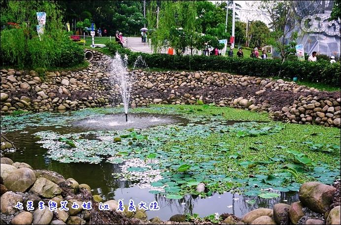 9 生態池