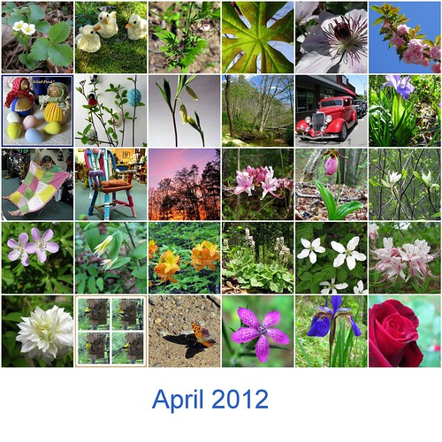 April, the month when everything flowered....
