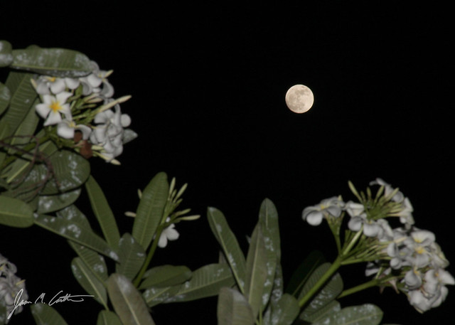 050412 SuperMoon_Hawaii