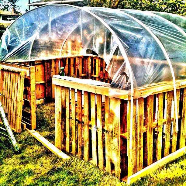 Helping build a pallet based greenhouse to house an for Build a greenhouse from pallets
