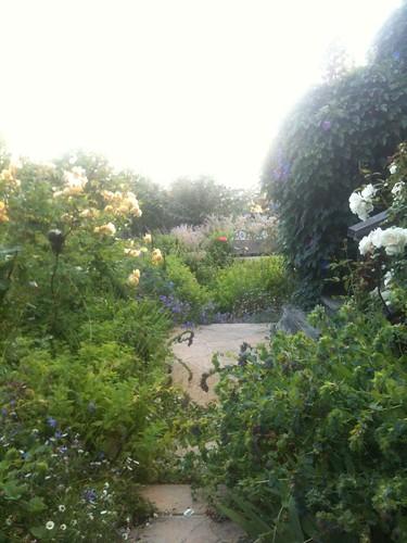 Laurie's Herb Garden