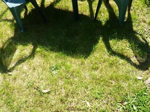 au jardin du samedi